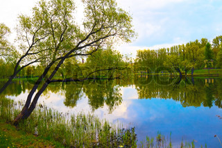 Spring landscape of lake and bright trees stock photo colourbox - Impressive house with tranquil environment to get total relaxation ...