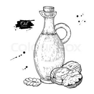 Bottle Of Walnut Oil Vector Hand Drawn Illustration Glass Pitcher Vintage