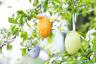 Easter eggs on blooming branches