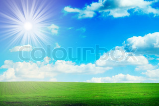 Green field, the blue sky and white clouds
