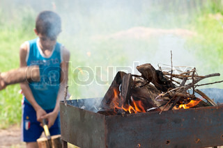 Picnic, the boy chopping wood Wood burning on the grill