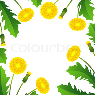 Summer background with yellow dandelions and green leaves