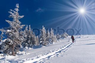 vintereventyr i Karpaterne