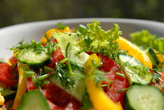 Salad from vegetables (tomatoes, cucumbers, pepper, salad, an onions, fennel)