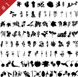 Vector collection of different plants and flowers silhouettes #1