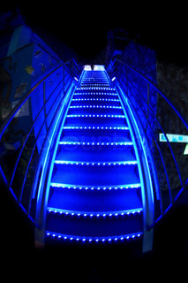 nice blue stairs in the night bar