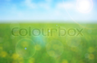 Green meadow with yellow flowers on a sunny day - defocused background