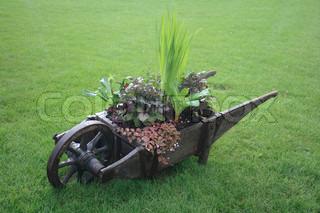 wooden wheelbarrow in the spring green park