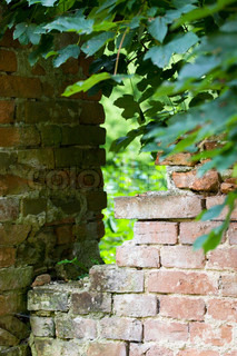 Old brick wall without plaster