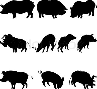 Collection of pigs and boars silhouettes Vector illustration