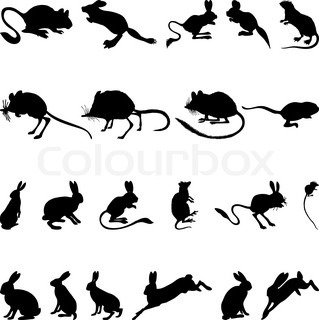 Collection of rodents silhouettes Vector illustration