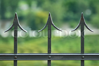 The iron fence on a green background