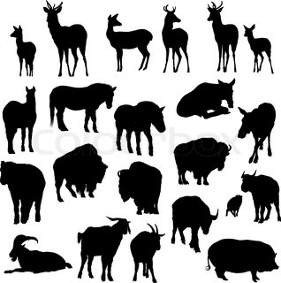 Set of deer, horses, goats, yaks, buffalos and pig
