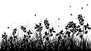 Vector grass silhouettes background All objects are separated