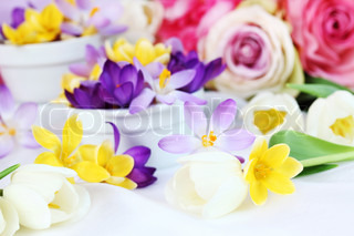 Easter detail with crocus flowers or spring motive