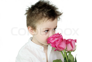 Young boy with pink roses on white background