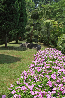 The most beautiful park in Southeast Asia A masterpiece of landscape architecture - a huge park in Thailand Gorgeous flower beds, lawns and tropical trees
