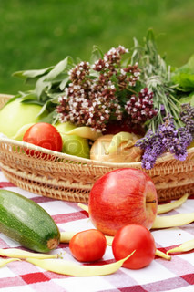 Harvest - vegetables and herbs from garden