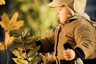 Beautiful little boy with autumn leaves outdoors