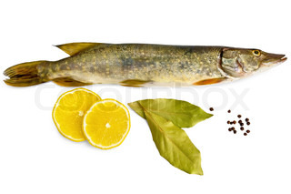 Fresh fish, two slices of lemon, two bay leaves, black pepper isolated on white background