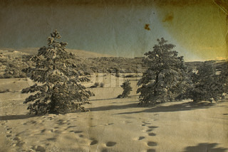 Vintage retro style winter landscape christmas photo
