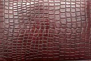 close up of reptile leather