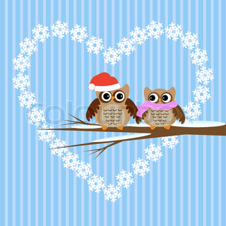 Winter  vector card.Owls couple in love.
