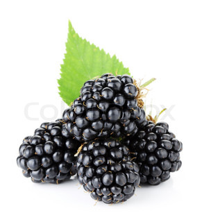 Ripe blackberry fruits with green leaves Isolated on white background