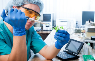 scientist with green plant in modern laboratory
