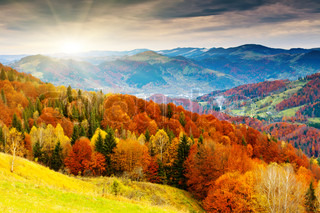 bjerget efterår landskab med farverige skov