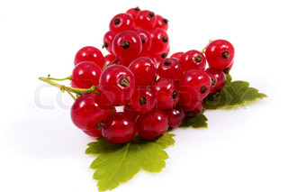 Fresh red currants on a white background
