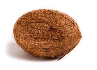 whole coconut isolated on a white background