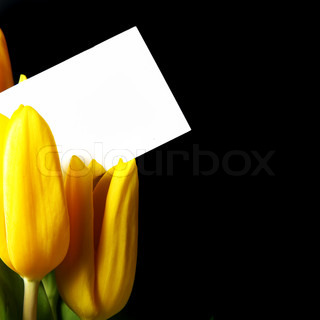 Bouquet of yellow tulips with blank card over black background