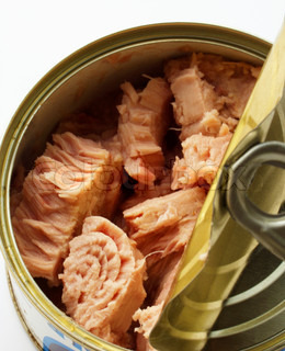 Open iron bank with canned fish in oil