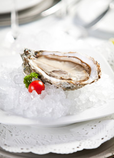 Oysters on ice, close-up photo, small dof