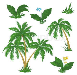 Palm trees, flowers and green grass on white background