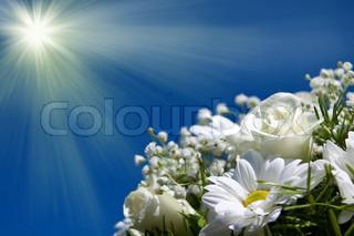 boquet af hvide blomster på sol himmel baggrunden