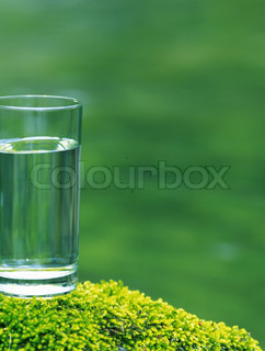 A glass of fresh water in the forest