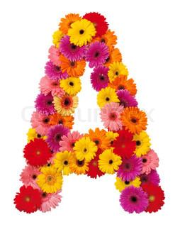Letter A - blomst alfabet isoleret på hvid baggrund