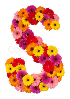 Brev S - blomst alfabet isoleret på hvid baggrund