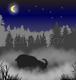 The goat costs in a fog against wood a moonlight night