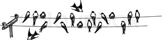 vector - swallows sitting on phone wire