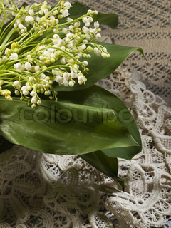 lily of the valley on a background from a canvas