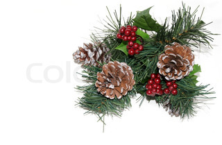 Pine cones, berries and holiday greens on white