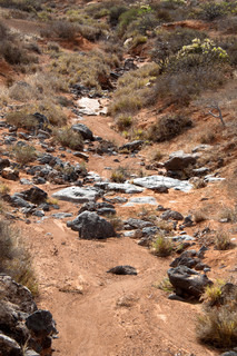 Dried River Bed On Lanzarote, Canary Islands, Spain