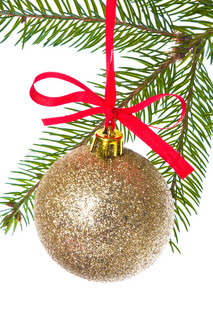christmas ball shanging from fir tree isolated on white background