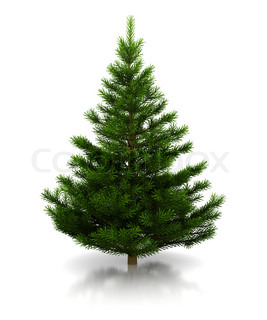 3d illustration of undecorated christmas tree over white background
