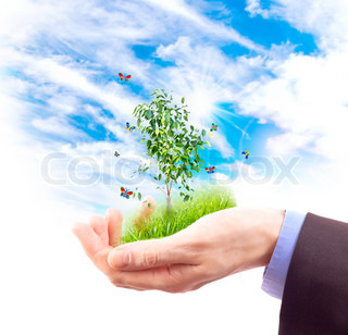 Human hand and multicolored butterflies, grass and plant on sky background