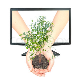 Hands holding a plant with roots and copy space