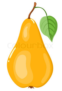 The yellow pear Isolated on white Vector illustration